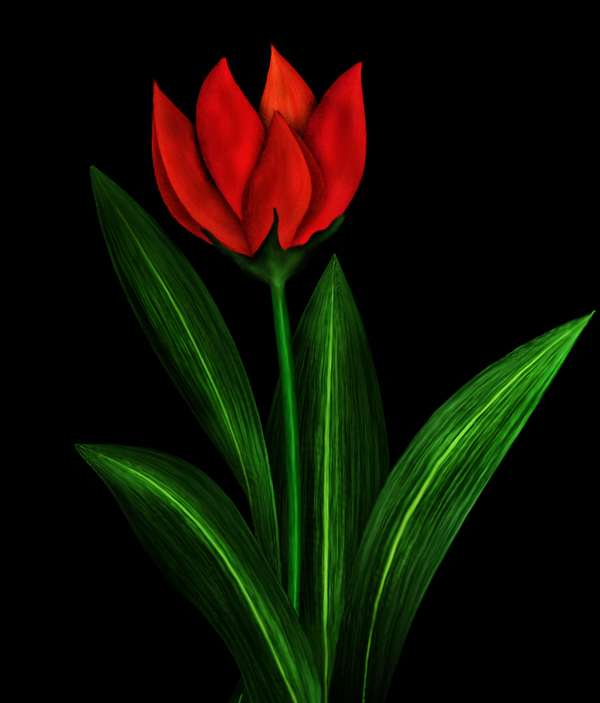 легкая картинка аленького цветочка